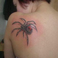 Татуировка паук на лопатке