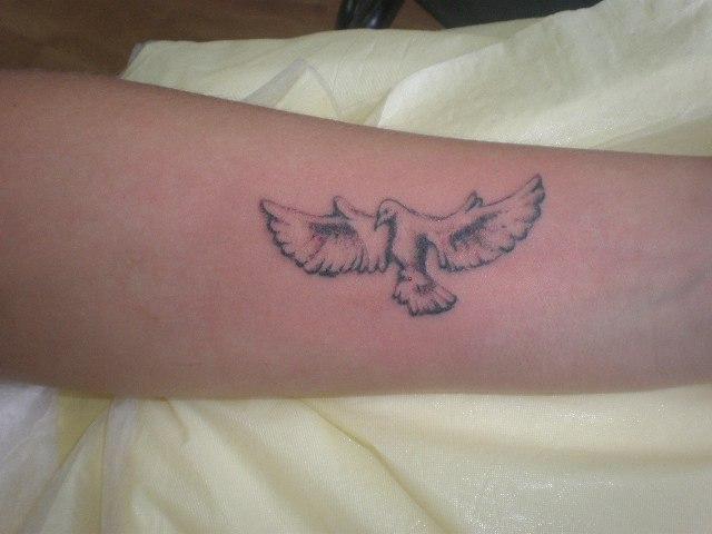 Татуировка голубя на предплечье