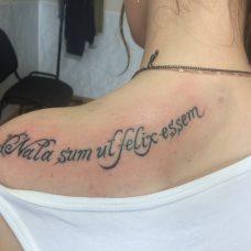 Латинская надпись на лопатке